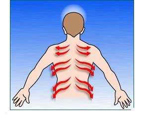 Keď osoba leží na bruchu, nasledujte dráhy len podtiaľ ako vyznačujú šípky.